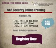 SAP Security Online Training London